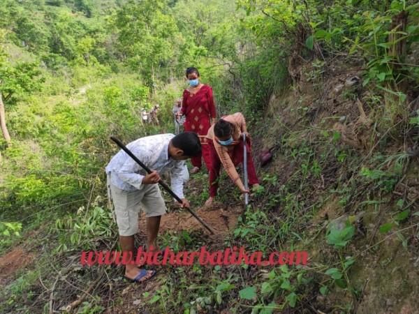 वातावरण संरक्षण परियोजनाको सहयोगमा सानिमदौले वृक्षारोपण गर्दै